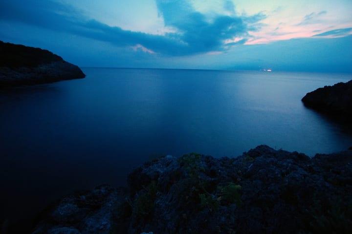Animosque Giannutri -Plumbago-Isola Esclusiva