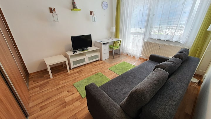 Celý byt 1+1 s balkonem, včetně vybavení+minibar.