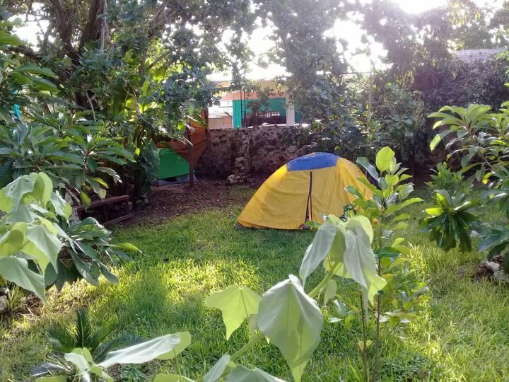 Camping Árbol de la Vida/Baños compartidos, wi-fi
