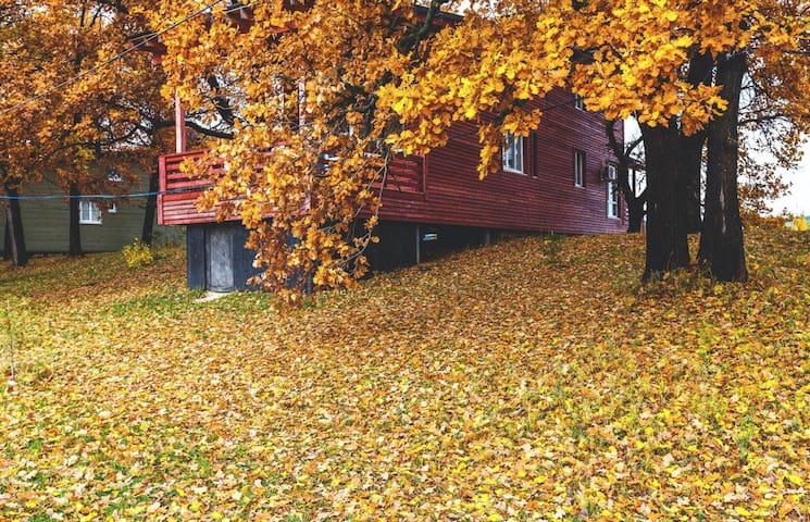 Фасад, осень