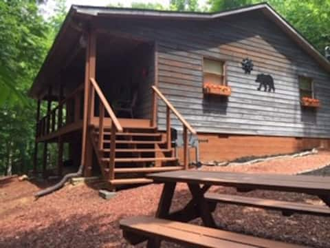 """""""Just Right"""" Cabin in the Woods comfy and rustic!"""