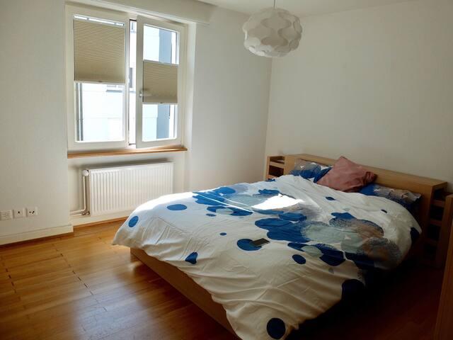Cozy room close to Rhine - Basel - Apartment