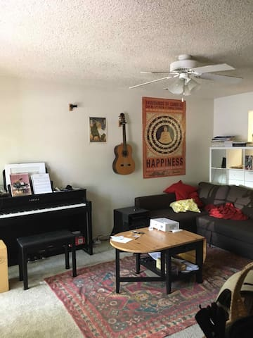 Davis Townhouse - Looking for a cat-sitter