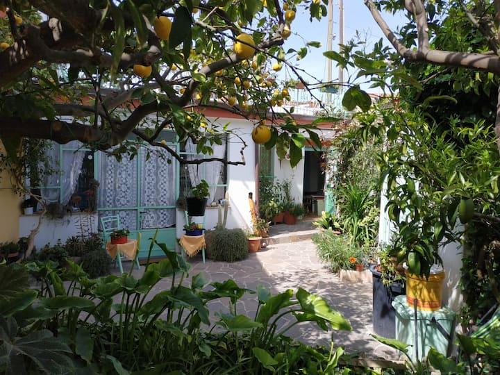 La casa di nonna Assunta a Sardara