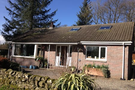 A detached bungalow, surrounded by trees - Moniaive - Bungalou
