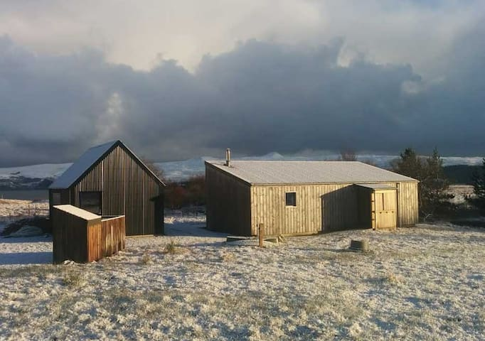 The Blueberry Shed