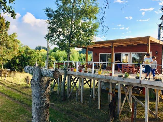 Wenuleufu Lodge: Verano, vacaciones  y naturaleza