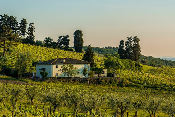 Double room immersed in the Chianti Vineyards