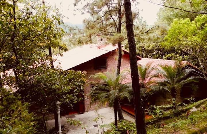 Casa rodeada por la naturaleza