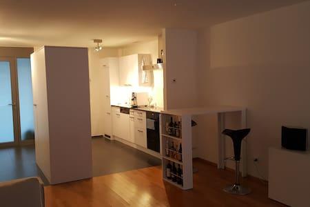 Modern and nice apartment close to Basel - Rheinfelden - Apartment - 2