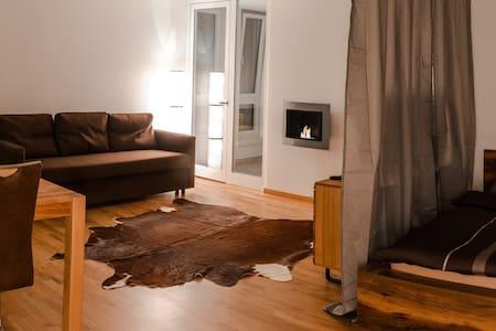 Cozy & central studio in Lucerne - Luzern - Huoneisto
