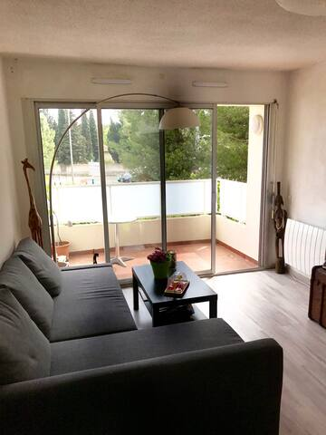 Flat 43m2 with balcony - Montpellier - Daire