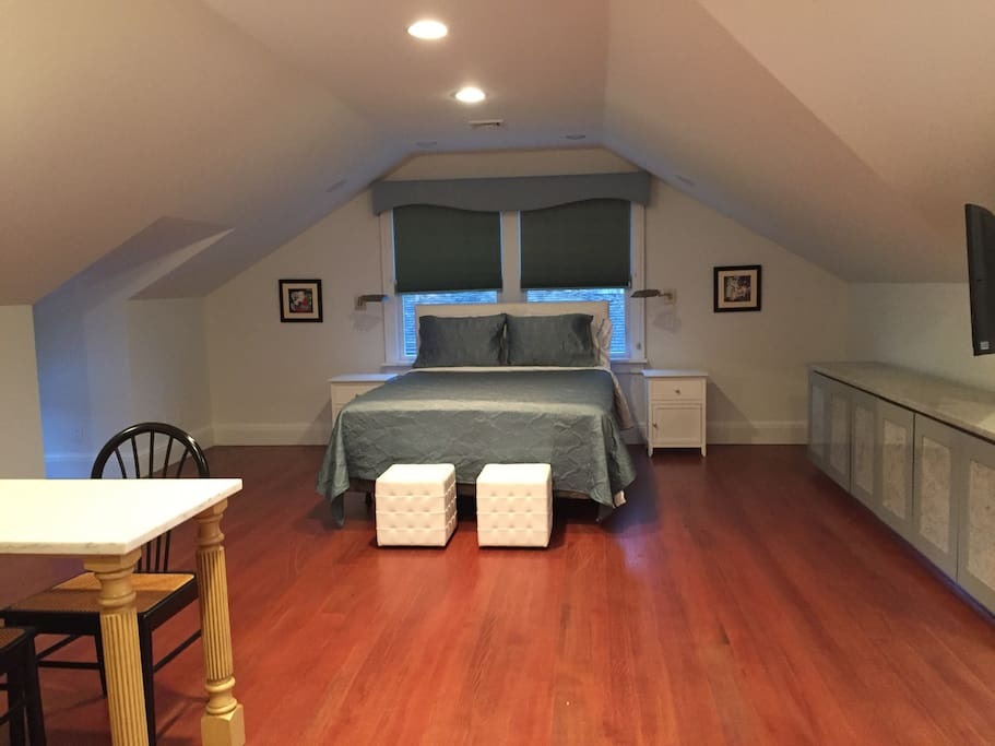 Queen size bed with two twin air mattress in closet if needed for kids.