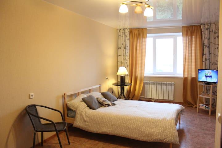Приятная квартира в центре города - Voronez