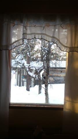Näkymä ikkunasta.