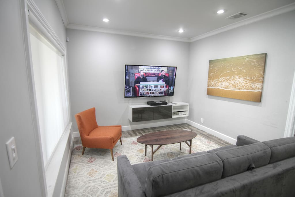 Living area with sofa bed