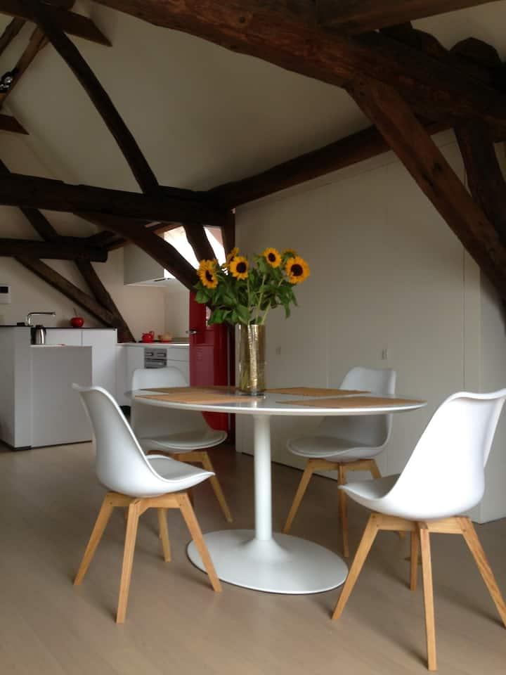Gezellige loft in centrum Gent met privé terras!