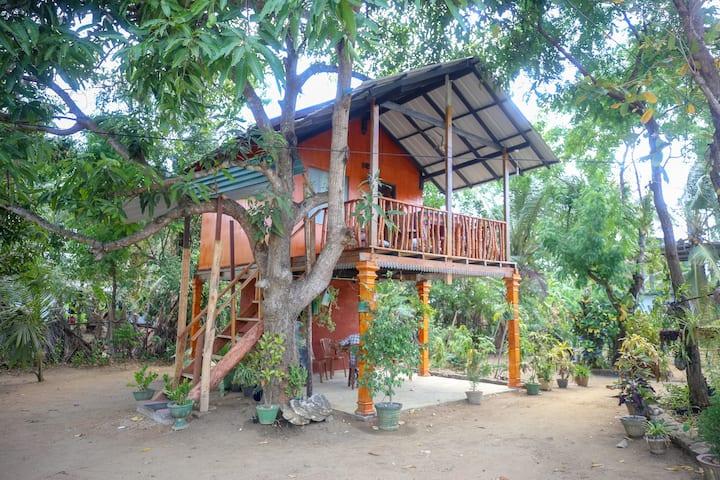 Neverbeen to Sigiriya Tree Hut