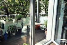 Ausblick auf eine Kastanienallee