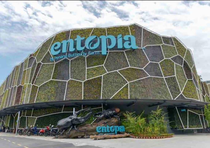 10 min drive to entopia ( Penang butterflies farm)