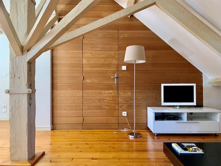 Bel appartement T2 sous les toits