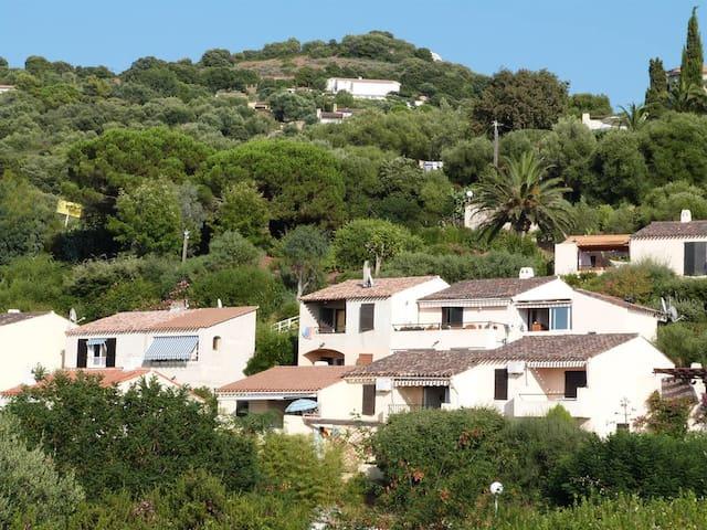 LOFT 50m2 avec grande terrasse couverte / CARGESE - Cargèse - Leilighet