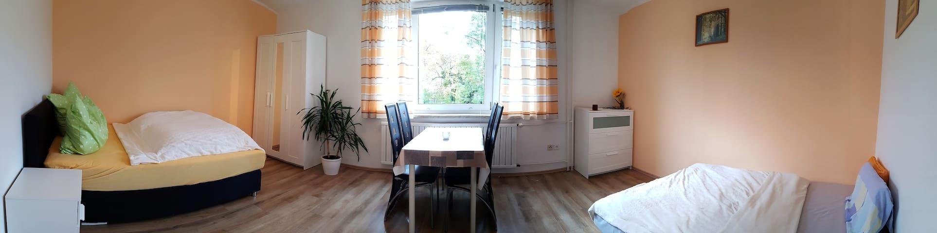 1-Raum-Appartment nahe Hochschule Coburg