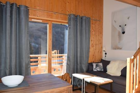 Bel appartement au coeur du domaine les Sybelles - Saint-Sorlin-d'Arves