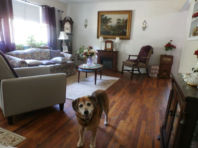 Nice guest Room to crash in - Chestertown - Huis