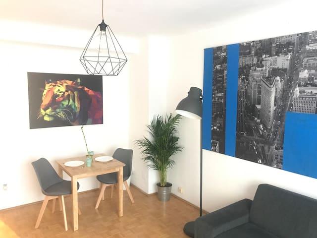 Cosy 2-Room Apartment ! Near Stephansplatz !