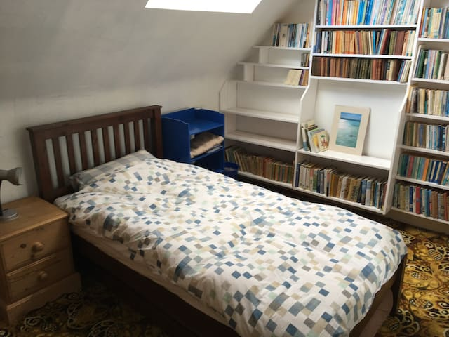 Attic library room in large granite house.