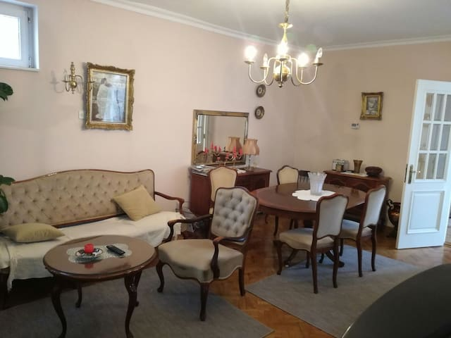 Vila Jelena,nice house-Ruma - Ruma - Gästehaus