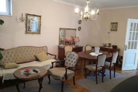 Vila Jelena,nice house-Ruma - Ruma - 宾馆