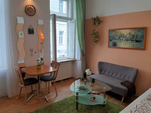 Charming Apartment near Metro & Schönbrunn Palace