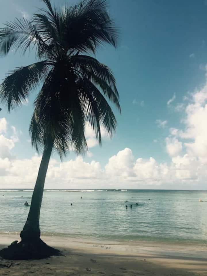 "Studio 2 ""jardin tropical sur la plage"""