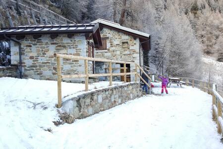 Chalet la Cort zona Passo Mortirolo - Almhütte