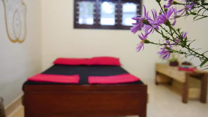 Private Room in the magic Dambulla