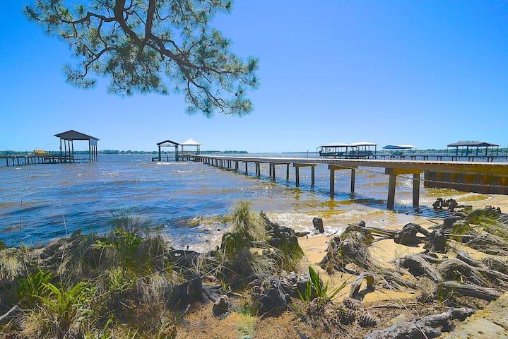 Bay Bushes at Perdido Bay