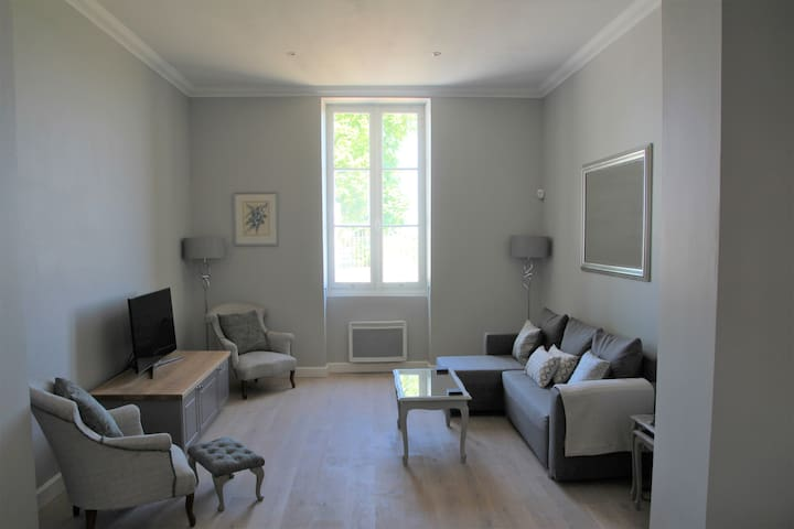 Living Room With Television, DVD Player and Renovated Louis XV Furniture