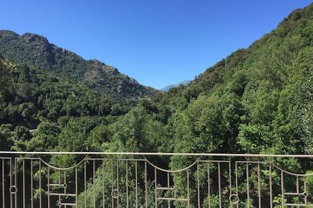 - Villa Ruggeri - Magnifique villa près de Corte - Santa-Lucia-di-Mercurio