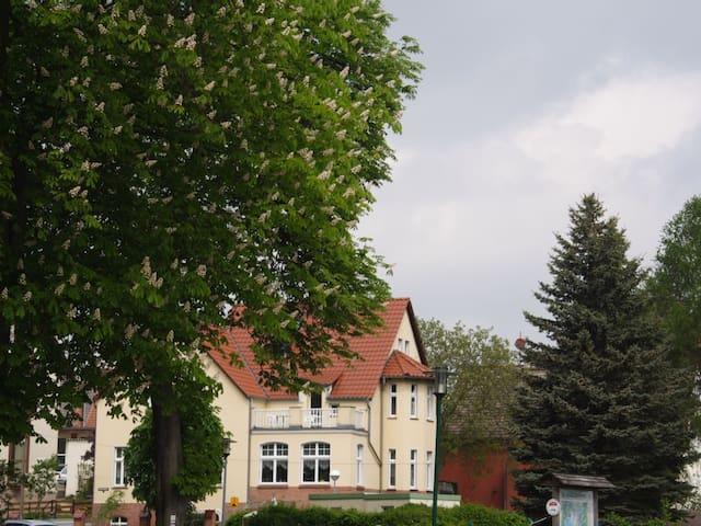 Fewo mit Blick auf den Oberpfuhlsee in Lychen - Lychen - Apartamento
