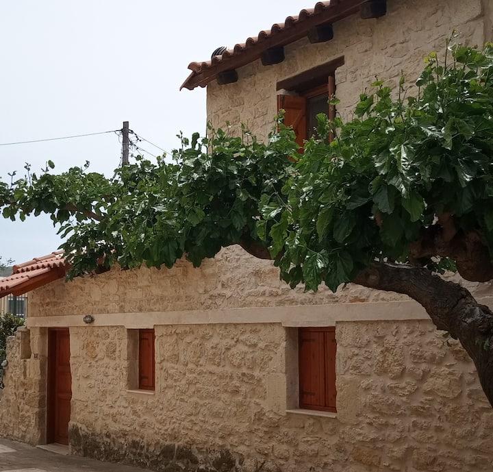 Marisa's House