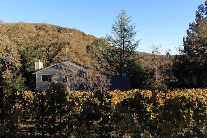 Sonoma Wine Country Home w Vineyard - Glen Ellen - House