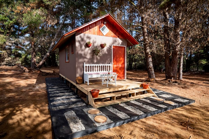 Cabañitas del Bosque l - Tiny Houses