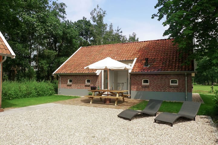 Detached and attractively furnished cottage in rural setting in Twente