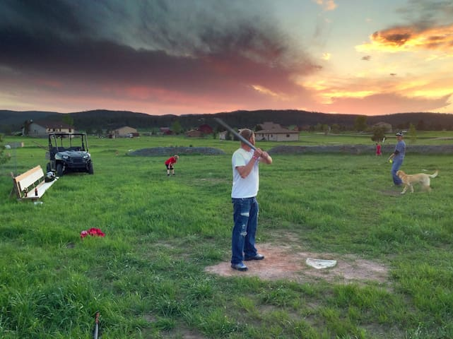 Wiffleball game (Backyard)