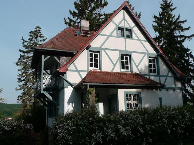 Das Alte Forsthaus - Geisenheim - 獨棟
