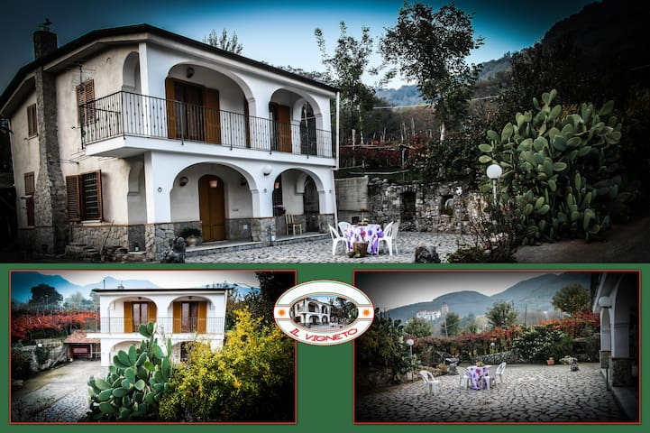 The vineyard country house, only 6 km from the sea