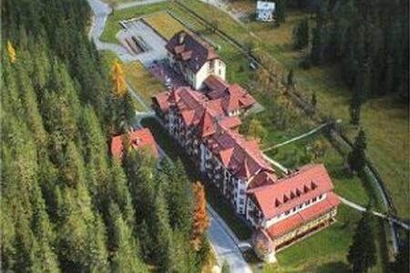 HOTEL PLONER SPA&RESORT A CARBONIN - Dobbiaco
