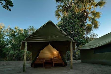 Motsebe - Dorm Safari Tent